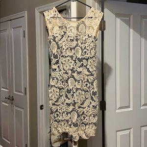 Cream lace cocktail dress